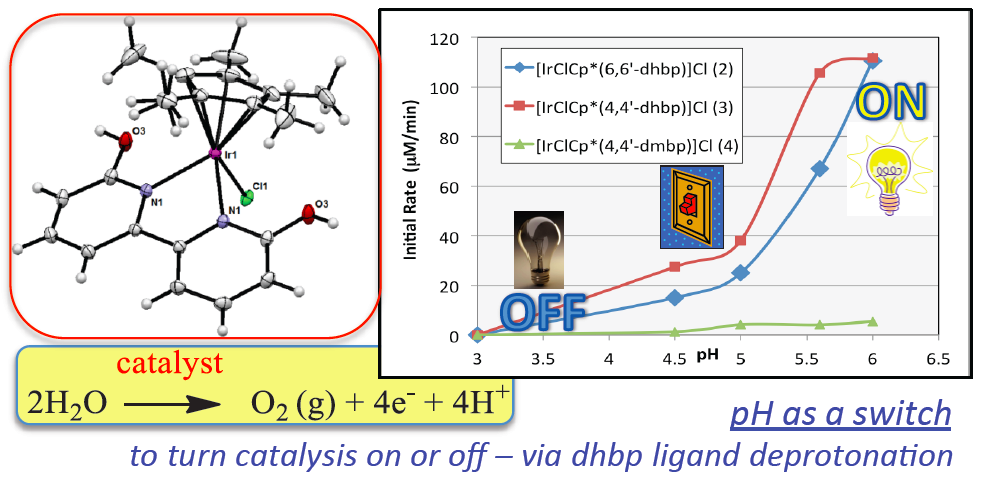 Ir complexes for water oxidation