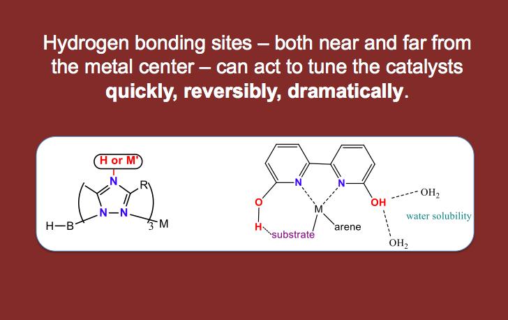 Hydrogen bonding site impact catalysis